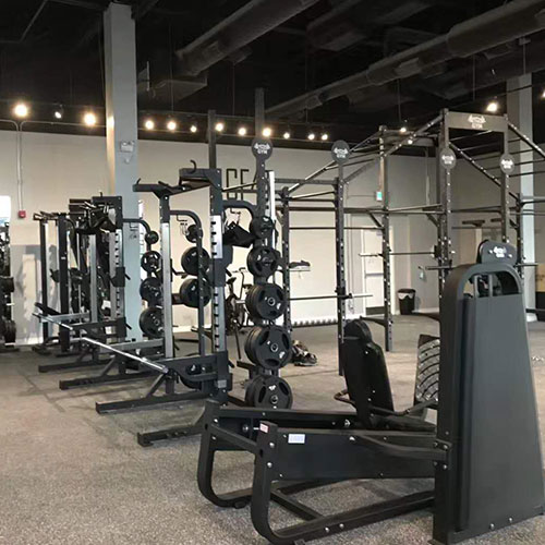 Canada Fitness Showcase Photo 3