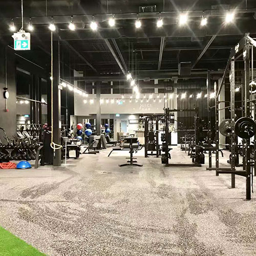 Canada Fitness Showcase Photo 4