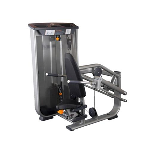 MC05 TRICEPS PRESS